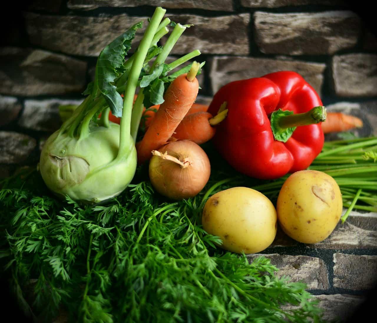 verduras barf